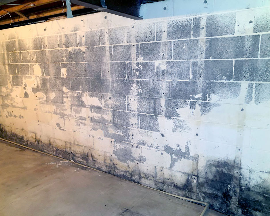 basement waterproofing, comprehensive mold management, rochester, ny