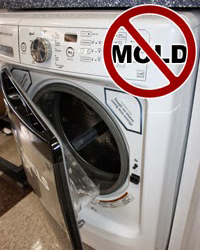 mold removal, CMM, rochester, NY