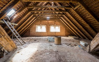 How to inspect your attic. Key items to look for.